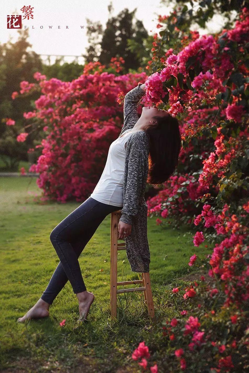 暖冬丨把花和芦苇一起收进相册里