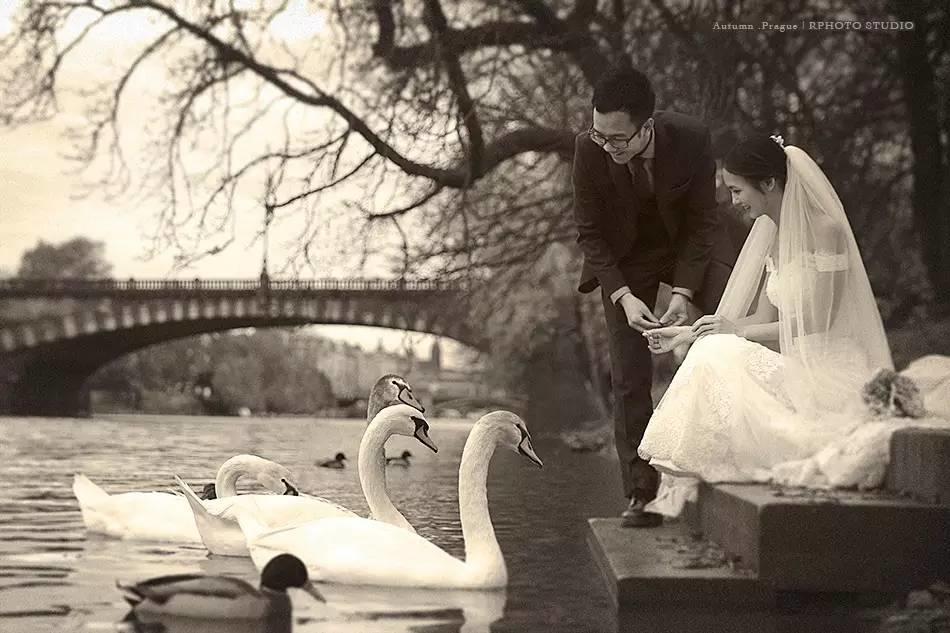 染影旅拍 | 我们在布拉格喂鹅,在巴黎追鸽子